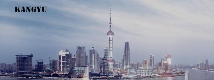 上海康育企业管理咨询有限公司